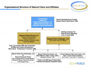 NatchemOrgStructureDec2014